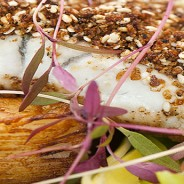 Spice Crusted Barramundi